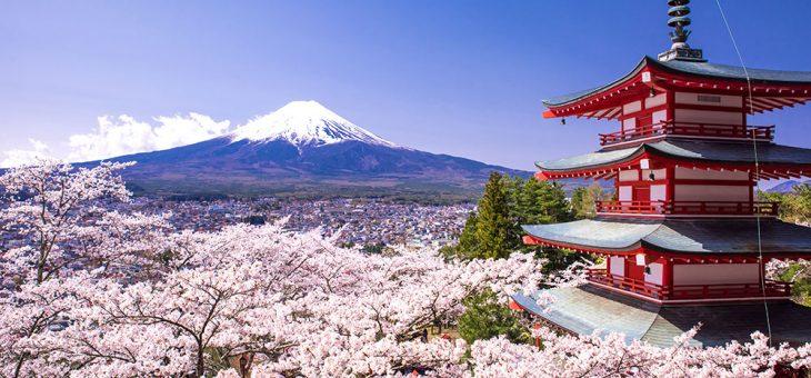 Маршрут ✈✈ Токио с Qatar Airways и Япония през моите очи ✈✈